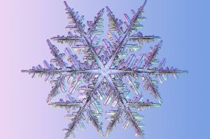 snowflake_shapes_and_science_0